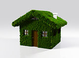 a house made of grass