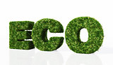eco word composed by grass
