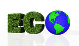 eco word with the world