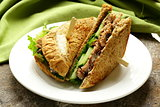 Tuna sandwich with cucumber and lettuce
