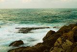 Jaffa shore 2013