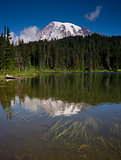 Vertical Composition Mt. Rainier Mirrored Reflction Lake Cascade