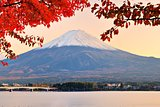 Mt. Fujiin Autumn