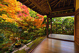 Fall Foliage in Ryoan-ji Temple in Kyoto