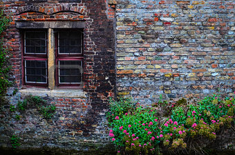 Old vintage brick wall with rusty window and flowers