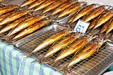 Grilled saba fishes