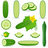 Icon Set Cucumber