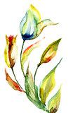 Original Lily flower