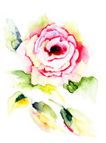 Summer illustration of Roses flowers