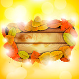 Wooden board with autumn colorful leaves