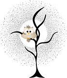 Owl Against a Star Night Sky