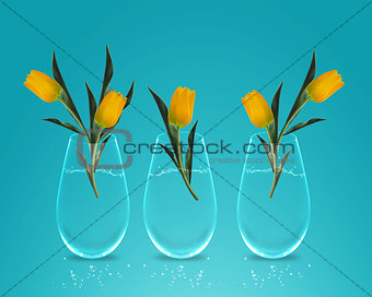 Three Yellow colorful Tulips