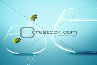 Anglefish in small fishbowl watching goldfish jump into large fi