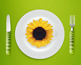 sunflower on plate