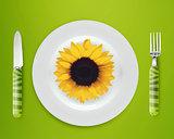 sunflower on plate