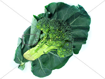 broccoli and Leaf