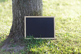 blank blackboard on the grass near the tree