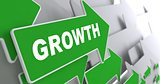Growth. Business Concept.