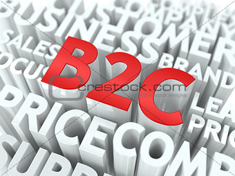 B2C. The Wordcloud Concept.