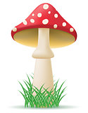 mushroom amanita vector illustration