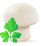 mushroom champignon vector illustration