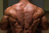 male bodybuilder flexing his back