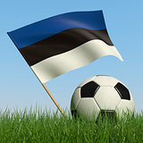Soccer ball in the grass and flag of Estonia.