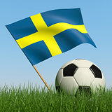 Soccer ball in the grass and flag of Sweden.