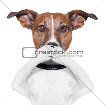 covering mouth dog