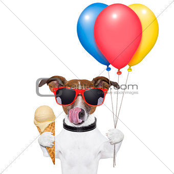 dog with ice cream