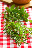 various herbs
