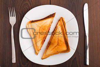Grilled sandwich on plate