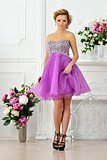Beautiful woman in violet  dress in luxury studio.