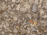 Grunge texture with cement and stones