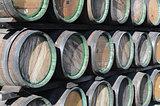 wine woods