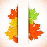 Abstract autumn background with white strip for text