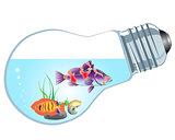 bulb-aquarium