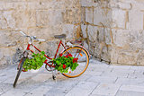 Red bike with geranium flowers.