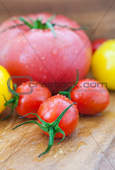 Assorted colorful  wet tomatoes