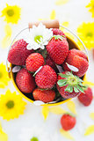 Fresh strawberries  in yellow bucket