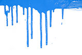 Blue paint  dripping / isolated on white / real photo