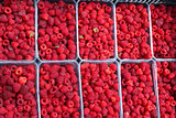red berries of raspberry