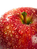 Wet red apple macro