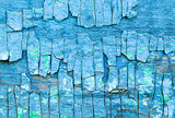 Chapped blue paint on wooden surface texture closeup background.