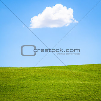 Green field in Tuscany