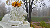Statue of marble lion in Catherine park.