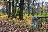 Autumn landscape in Catherine garden in Pushkin