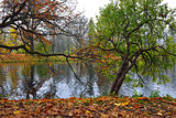Autumn view with lake in Catherine garden in Pushkin.