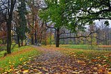 Autumn landscape in Catherine garden,  Pushkin,