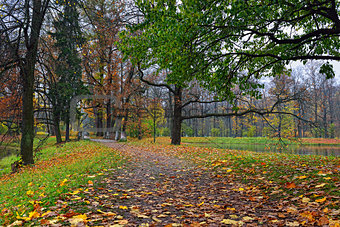 Autumn landscape in Catherine garden,  Pushkin,